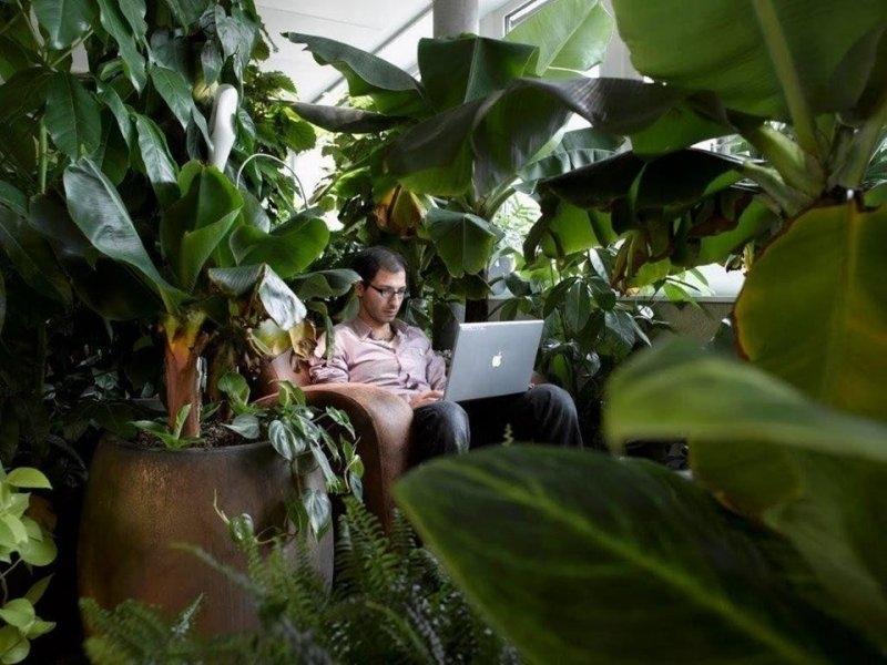 Herkesin Çalışmak İstediği Yer: Google Ofisleri 3