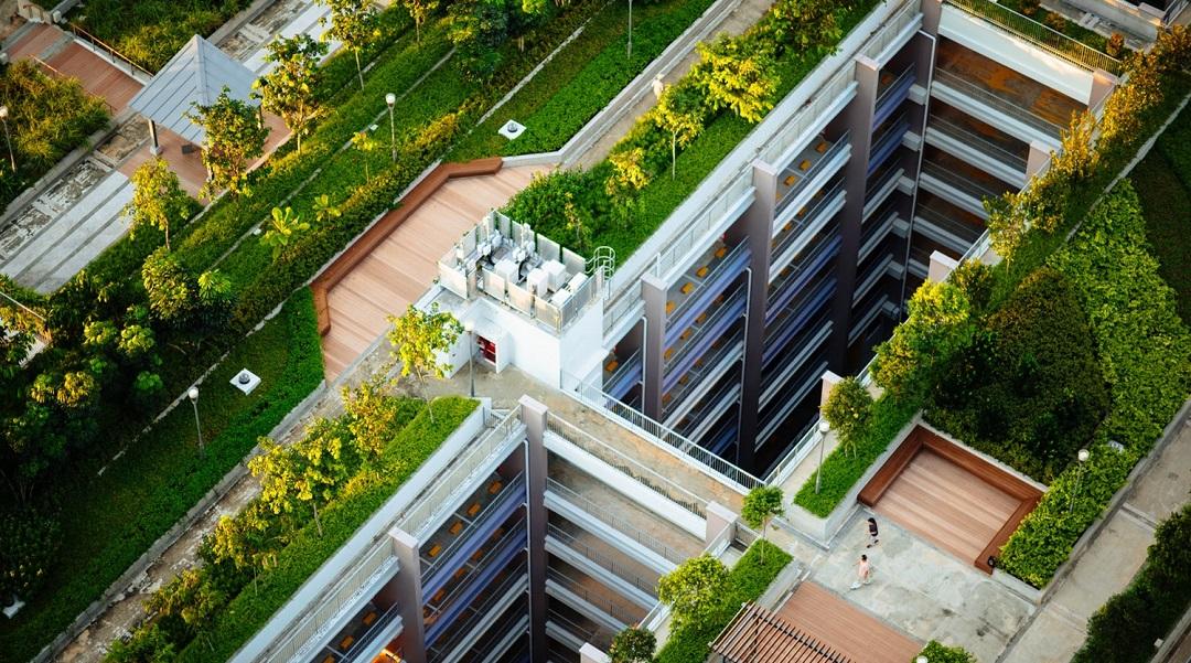 Bitkilendirilmiş Çatılar Su Taşkınlarını Önlüyor