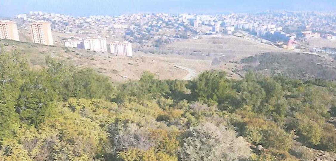 Karabağlar'da 80 Hektarlık Üniversite Alanında İmar Düzenlemesi