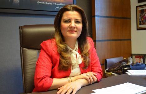 Darıca'da İmara Açılan Zeytinlikler Mecliste!