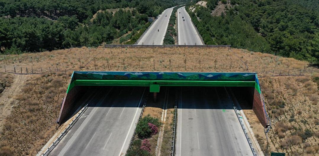 İzmir-Çeşme Otoyolu'ndaki Ekolojik Köprü Açıldı
