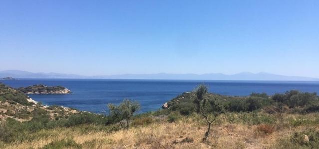 İzmir'de 'Hazine Arazisi' Dolandırıcısı 5 Kişi Gözaltına Alındı