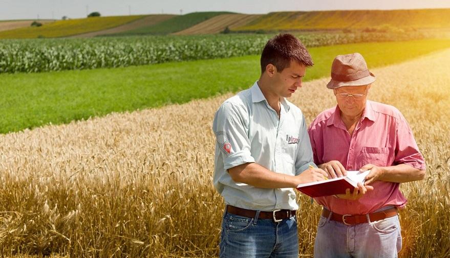 Tarım Arazileri Çiftçiye 10 Yıl Süreyle Kiraya Verilecek