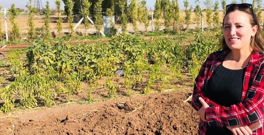 Mevcut Hobi Bahçelerine İlişkin Belirsizlik Devam Ediyor