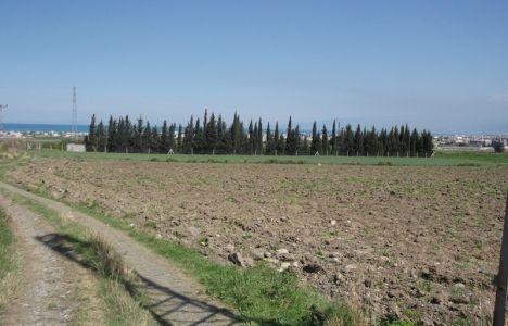 Hatay Arsuz'da 45 Bin Dönümlük Arazi Sit Alanı İlan Edildi!