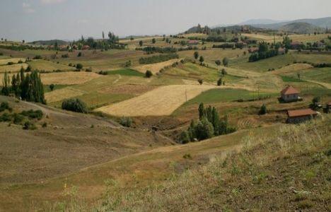 Yabancı Yatırımcılar 19 İlde Bin 830 Dekar Tarım Arazisi Aldı!