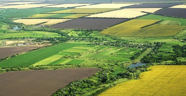Hazineye Ait Tarım Arazileri Şartlı Satılabilecek!