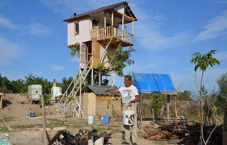 Ceviz Ağacına Dubleks Ev Yaptı!