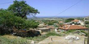 Ünlü Oyuncu Arazi Baktı, Köyde Gayrimenkul Fiyatları 2 Katına Çıktı