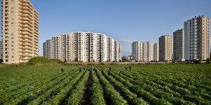 Tarım Arazilerinin Satış ve Kiralama Yetkisi Bakanlığa Geçti
