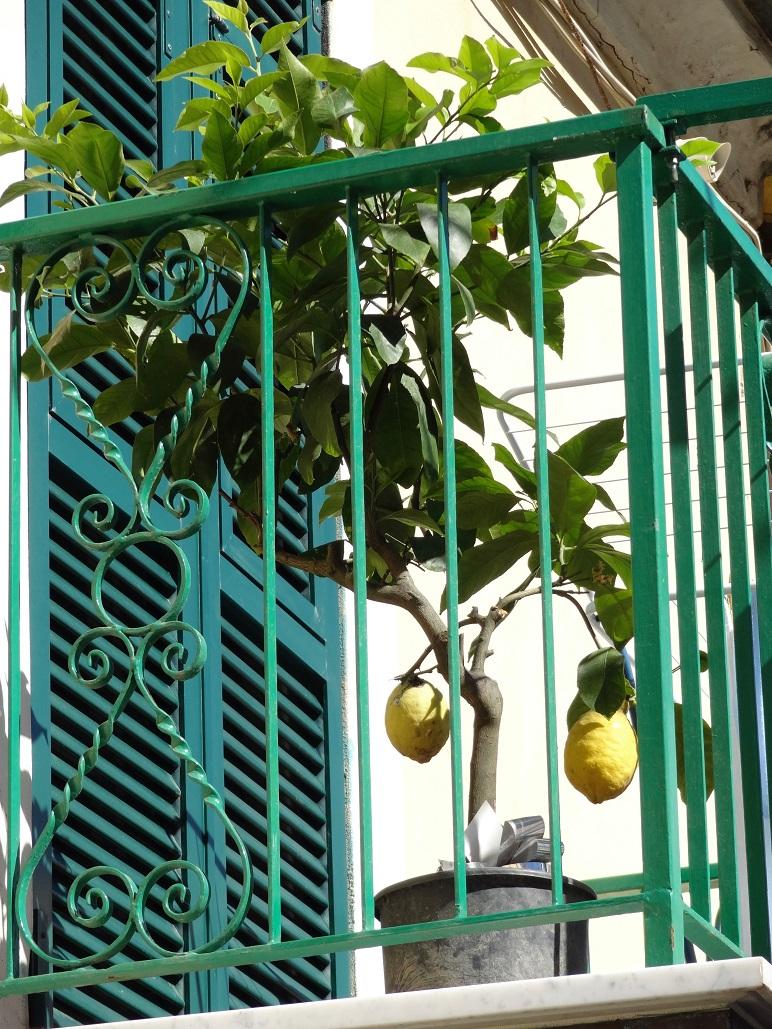 balkon-boyama.jpg
